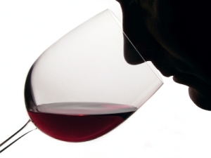 Wine Tasting Picture