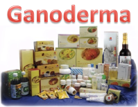 Ganoderma Health