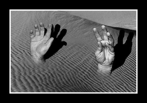 34776777_Quicksand