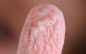 Wrinkly_fingers