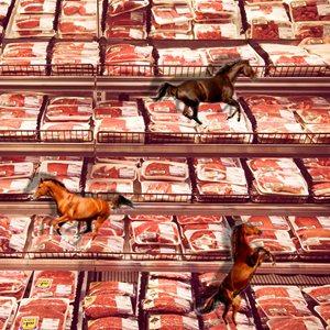 meathorse_300