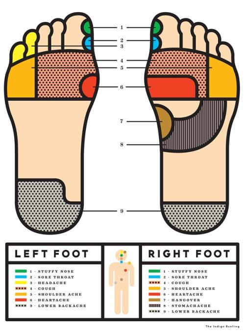 Foot Reflexology Illustration