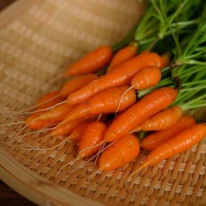 Baby_Carrots_2