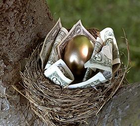 nest-egg1