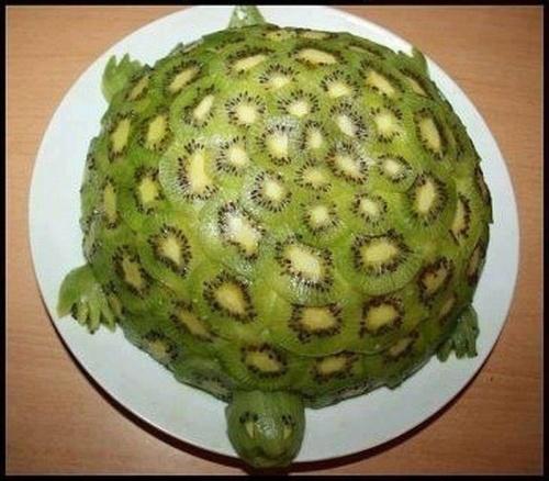 Turtle made entirely of Kiwi fruit