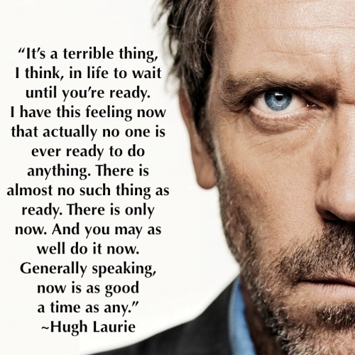 now is as good a time as any.~Hugh Laurie