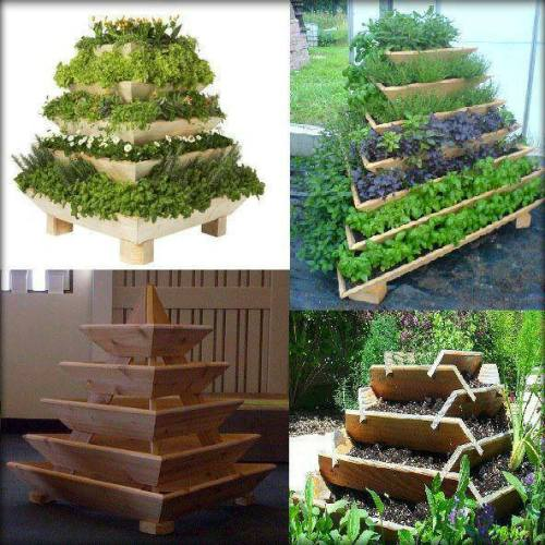 Food Pyramids maximize space to grow food. Apart from being very practical they are beautiful to look at.