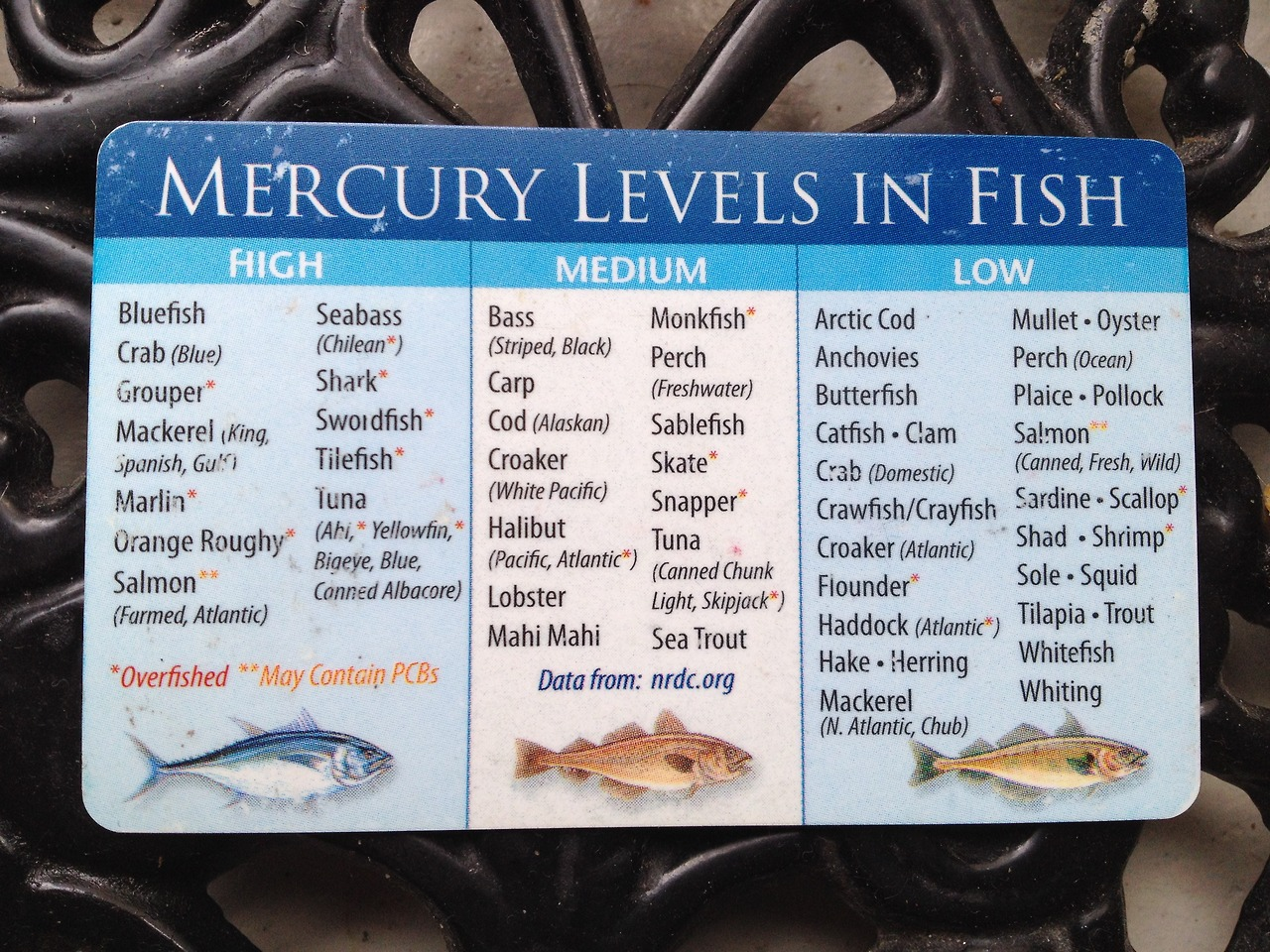 Useful indication of mercury in fish lesley voth for Fish with high levels of mercury