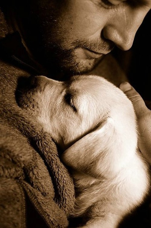 A dog doesn't care if you're rich or poor, educated or illiterate, clever or dull.  Give him your heart and he will give you his. 600×905 pixels