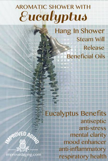 hang eucalyptus in shower