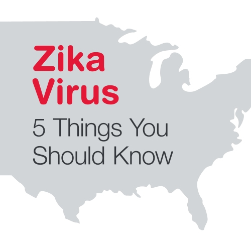 Zika Virus - 5 things you should know (Zika Virus- Symptoms and Treatment - Walgreens on Tumblr - Stay Well http-::staywell.walgreens.com:post:143130407550:zika-virus)
