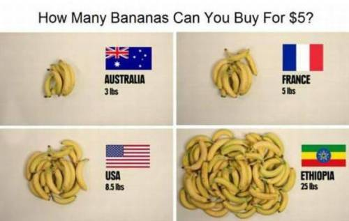 how-many-bananas-can-you-buy-for-5