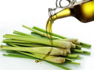 lemongrass-oil
