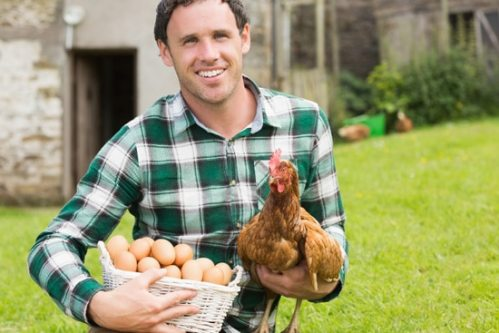 young-man-holding-a-chicken-and-eggs